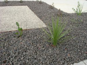 40mm natural drainage aggegate used as a mulch