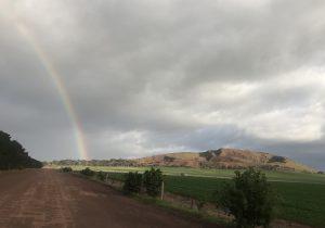 Aerolite under the rainbow