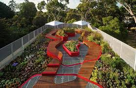 Roof Top Garden in melbourne